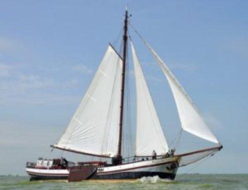 Bruine vloot IJsselmeer